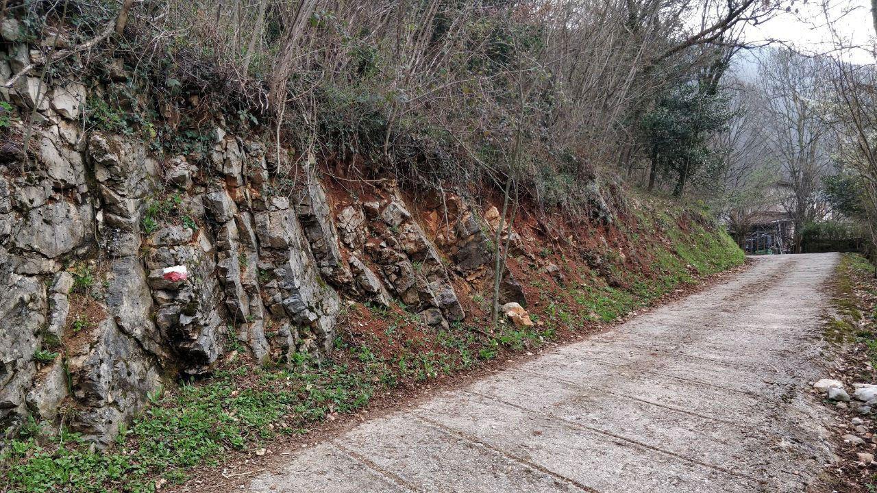 Strada cementata che va sinistra verso destra